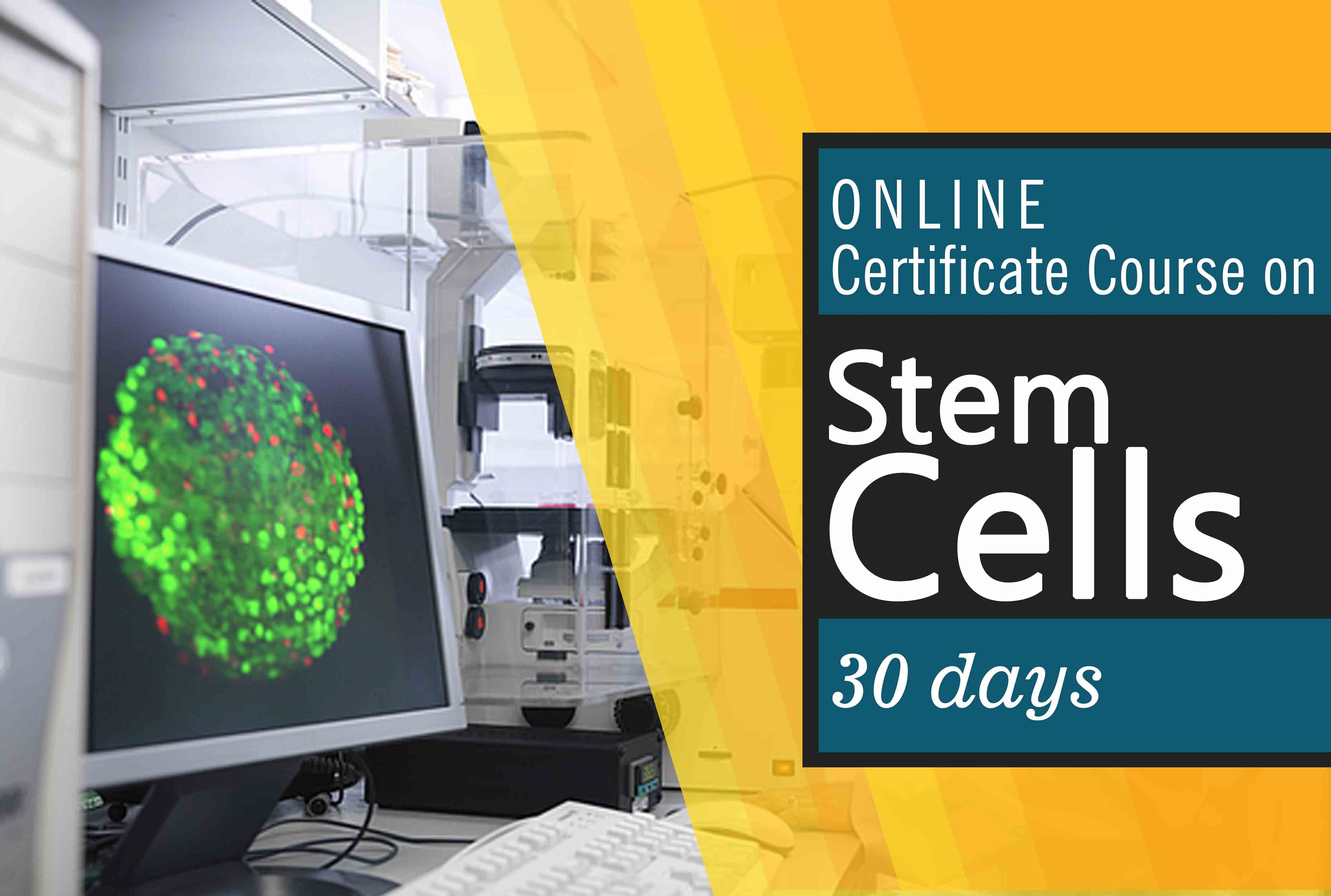Certificate course on stem cells